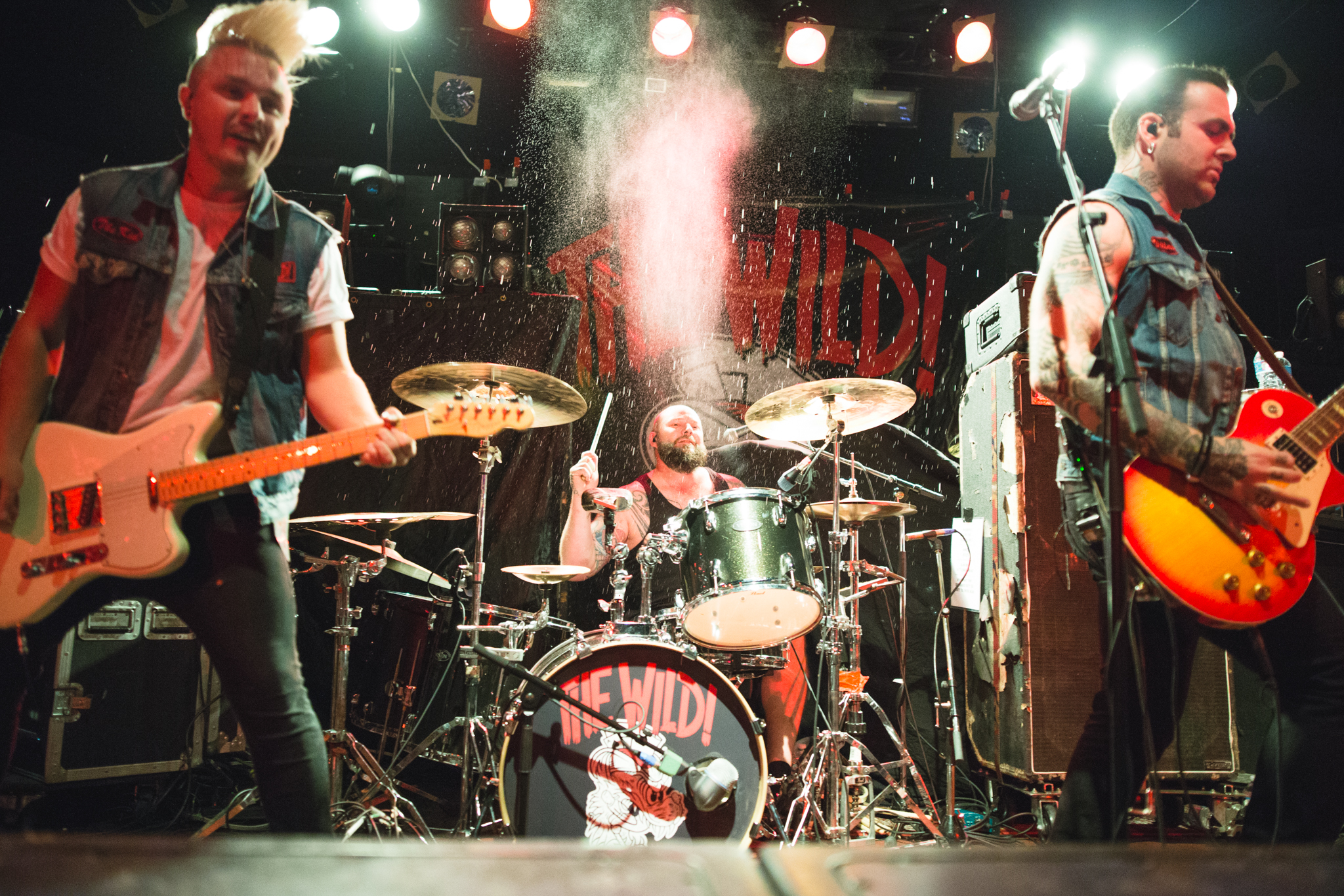 The Wild - Photo by Lindsey Blane